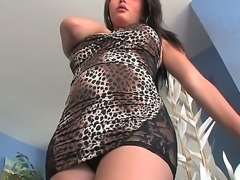 Taylor Stewart is extremely hard to tell from a real lady  this exotic tranny...