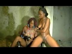 Africa X Sauvage 5 free