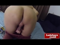 Seductive bigtitted ladyboy solo session