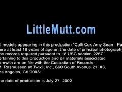 Amy Cali 2